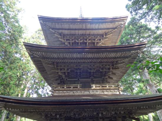 Pagoda at Myotusji Temple