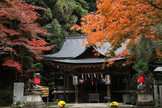 Tomi Shrine