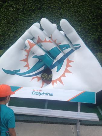 Dolphin Stadium: photo3.jpg