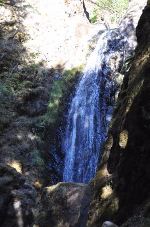 Idleyld Park, OR: Falls