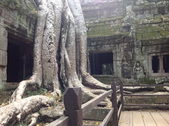 Phon Hong, Laos: Sito