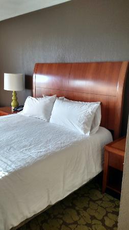 Hilton Garden Inn Tuscaloosa: IMG_20151106_153202228_HDR_large.jpg