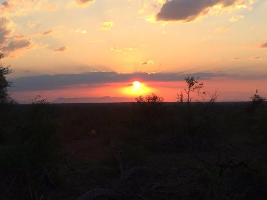 Kings Camp: Sunset in Kruger