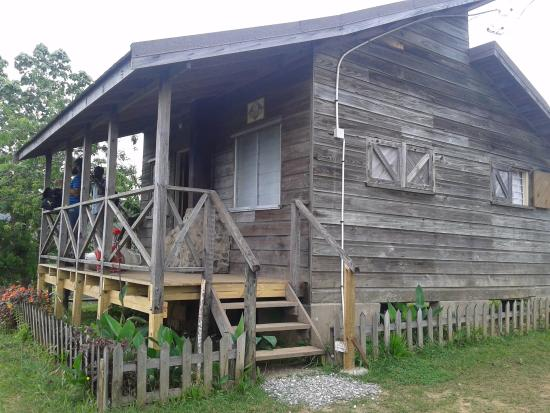 Holywell Park : One of the cabins