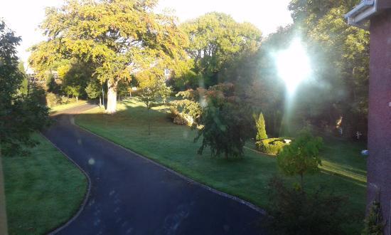 Glin, Irlanda: Visitas del jardín.