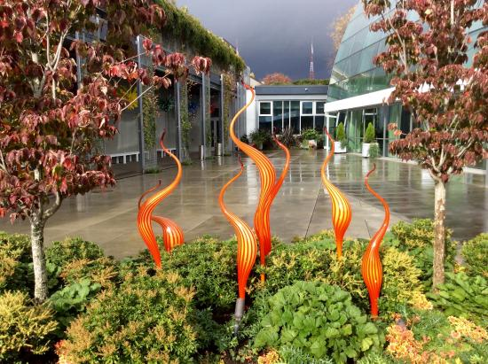 Incredible Room Picture Of Chihuly Garden And Glass Seattle Tripadvisor