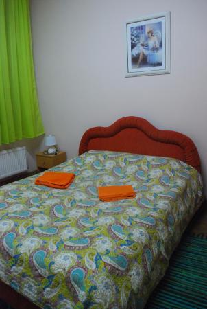 Tiger Hostel : Комната