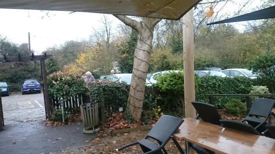The Horseshoe Inn: DSC_1696_large.jpg