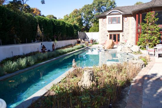 East Hampton Art House Bed and Breakfast: Pool