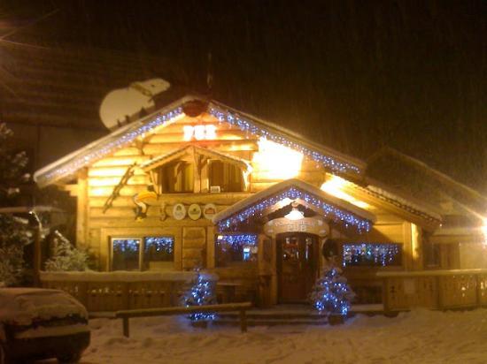 The Polar Bear Pub : .
