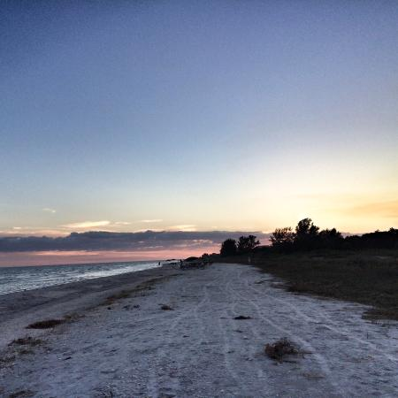 Photo5 Jpg Picture Of Song Of The Sea Sanibel Island