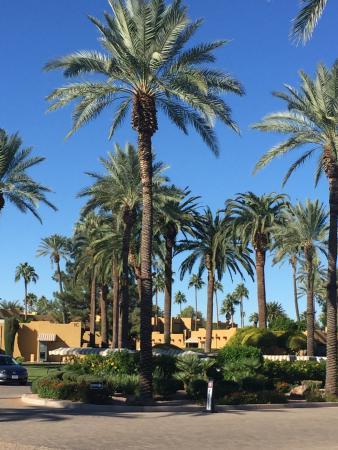 Litchfield Park, AZ: photo3.jpg