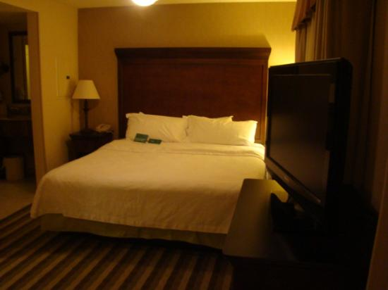 Homewood Suites by Hilton Dover: King bed