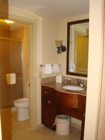 Homewood Suites by Hilton Dover: Clean bathroom