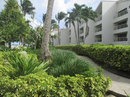 Golden Strand Ocean Villa Resort: outside of room