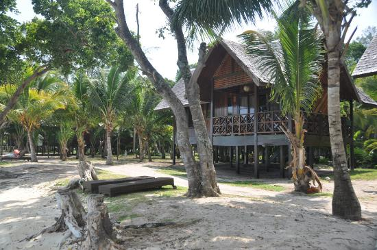 The Reef Dive Resort: Pulau Mataking Reef Dive Resort