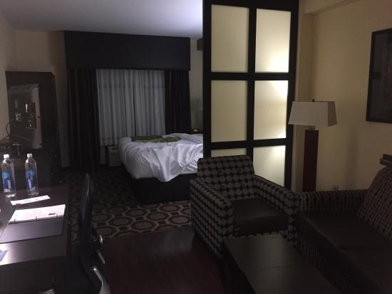 King Suite, Comfort Suites Lexington, SC