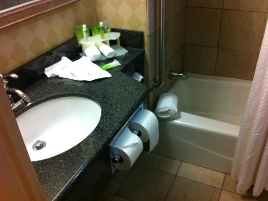 Holiday Inn Express Albany-Downtown: Bathroom