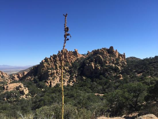 Cochise Stronghold: photo4.jpg