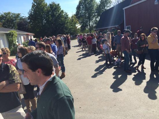 Jackson's Orchard: Looking back, this is the halfway point of the line I was in, just to get a caramel apple. 2 lon
