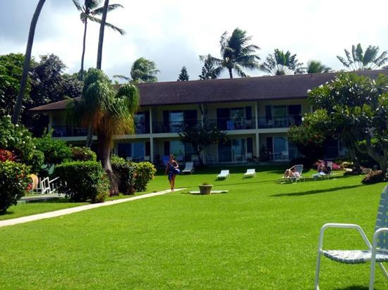 Napili Surf Beach Resort: View to partial ocean view rooms