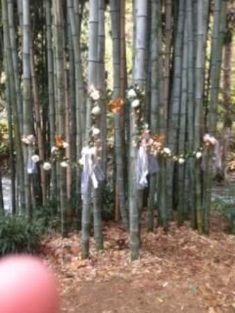 Oconaluftee Islands Park: Wedding decorations