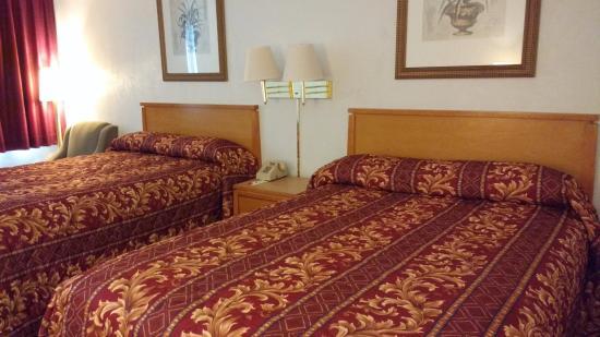 Econo Lodge University: The beds