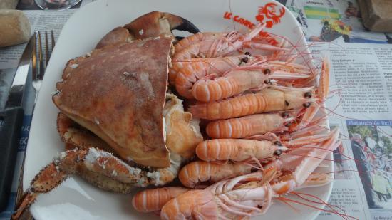le crabe-marteau: Assiette de Crabe