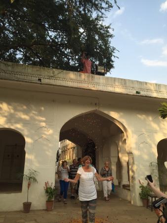 Samode Bagh Interesting en suite  tents  in calming gardens & Interesting en suite