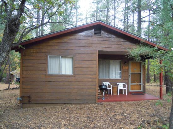 Whispering Pines Resort: Сам домик в сосновом лесу