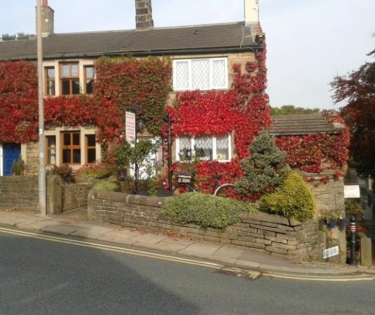 Rosebud Cottage Guest House: Rosebud Cottage