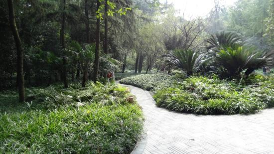 Chengdu Renmin Park : Lovely Grounds