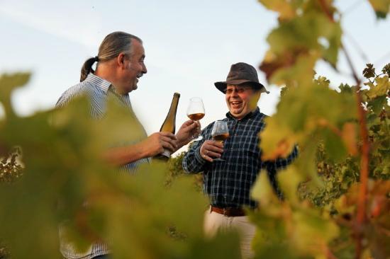 Pouancay, ฝรั่งเศส: Belle cave de vins naturels