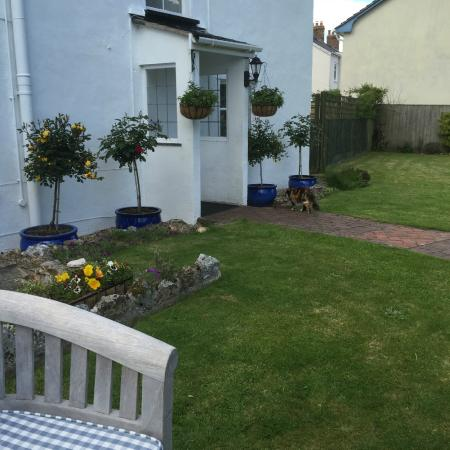 Colyton, UK: Garden at The White Cottage