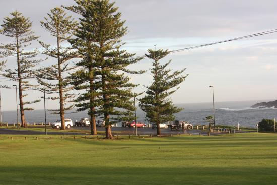 Kiama Cove Motel: beautiful view