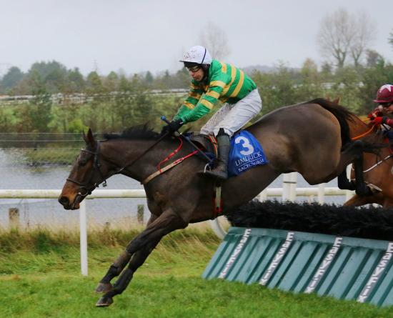 Limerick Racecourse: A Great View and Jody McGarvey jumping the last to win The Martinstown Opportunity Maiden Hurdle