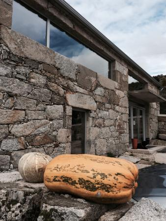 Cabeceiras de Basto, Португалия: Tasca Do Picao