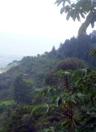Eco Reserva Susurros Del Bosque