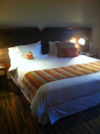 Hotel Dreams Araucania照片