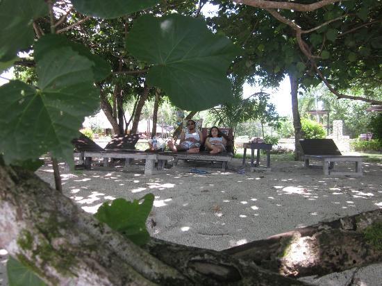 Payam Cottage Resort: IMG_2128_large.jpg