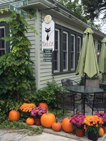Sharon Springs, NY: Fall at the Black Cat
