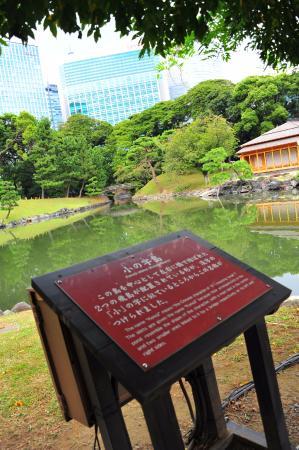 hama rikyu gardens tokyo - Picture of Hama Rikyu Gardens, Chuo - TripAdvisor