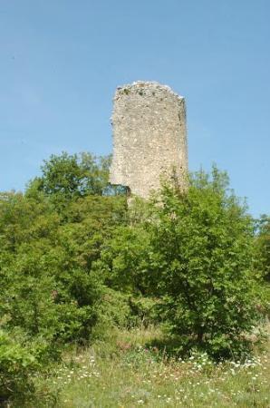 Serramonacesca, Italy: Torre Polegra