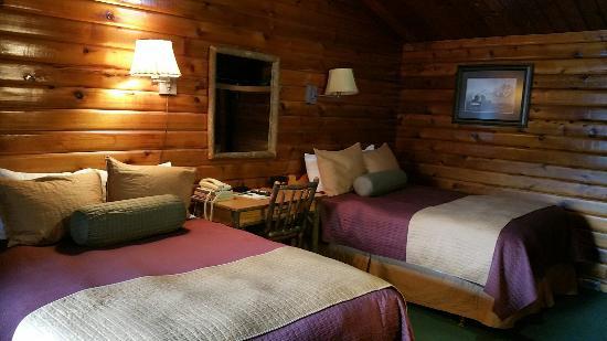 Antler Inn: 20151105_135454_large.jpg