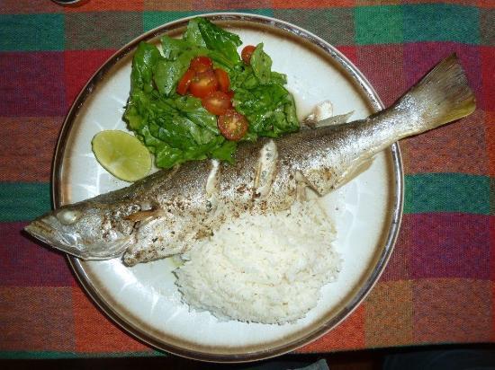Casa Anita: Le diner, nourriture saine et excellente