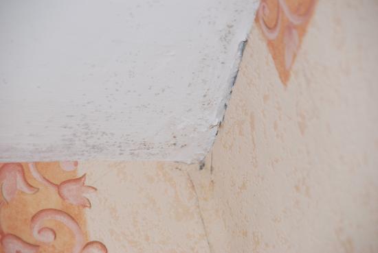 Spittal, UK: Decke im Badezimmer