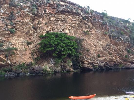 Olifantskrans River Cabins Photo