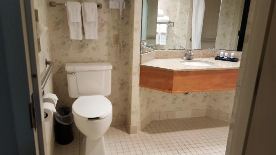 Handicapped accessible room, 343 - really tall toilet - Picture of ...