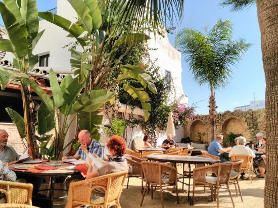 Foto de el jardin del califa vejer de la frontera img for El jardin del califa precios