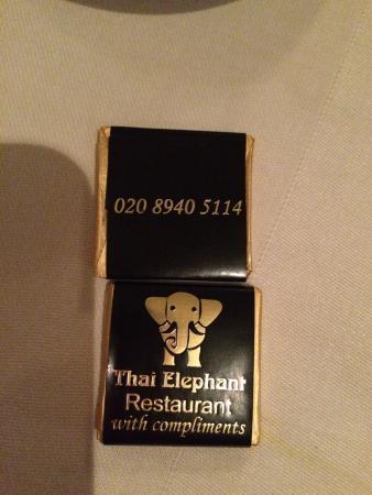 Thai Elephant Φωτογραφία